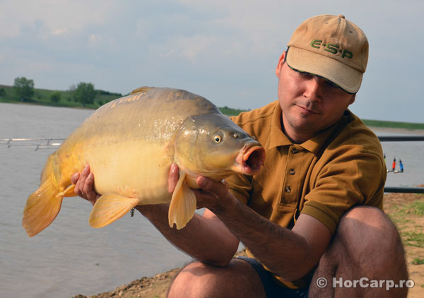 Pescuit la crap, Carp Fishing, Balta Cetariu