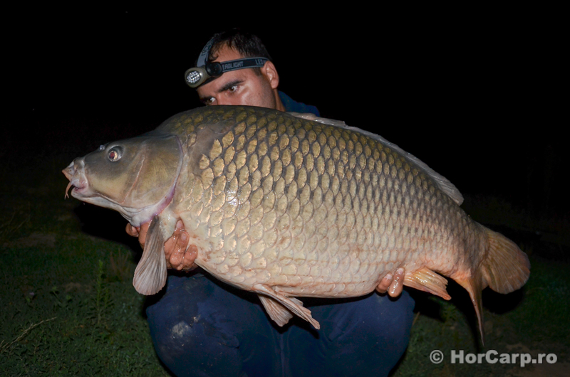 Pescuit la crap, Lac Sisterea, Carp Fishing
