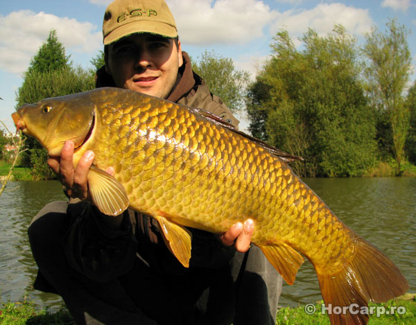 Pescuit la crap, Carp Fishing